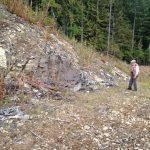 Examining area stratigraphy