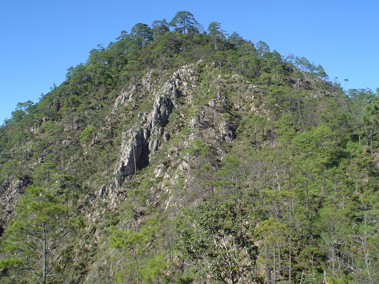 Rock outcrop at Pena Blanca